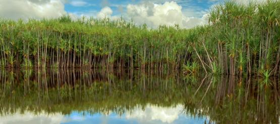 Sungai Kelaru,Kalimantan Tengah